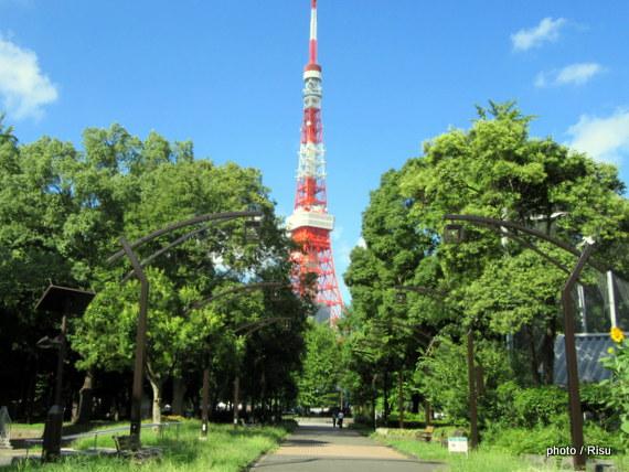 東京タワーの近くを走る